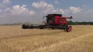 2014 Wheat Harvest with a Case IH 8230 Axial-Flow Combine
