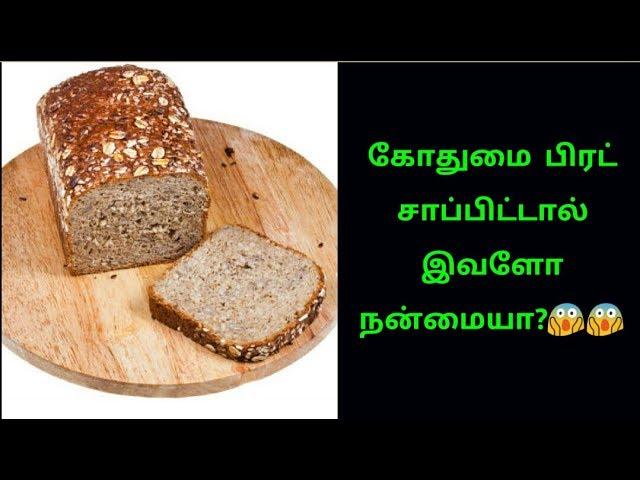 Wheat Bread கோதுமை பிரட் காலையில் சாப்பிட்டால் இவளோ நன்மை HD