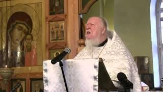 Димитрий Смирнов о мусульманах