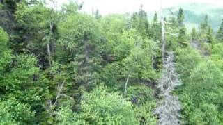 Ziplining Over Steady Brook Falls, Newfoundland Canada.