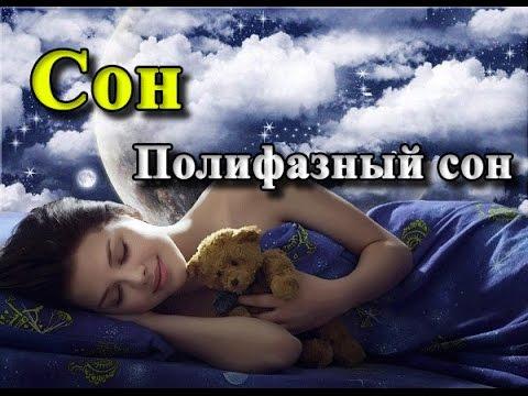 Изучения работы мозга во сне. Физиолог Пигарев И. Н.