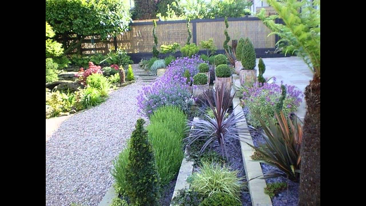 Garden Ideas Gravel Garden Plants Ideas YouTube