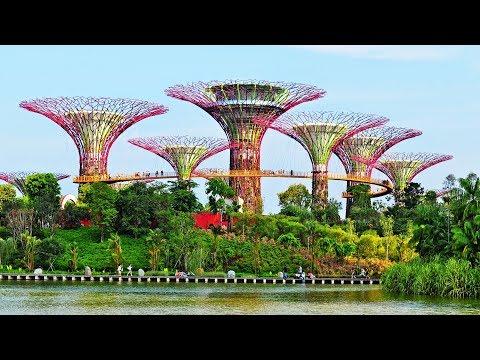 Les incroyables jardins artificiels de Singapour - ZAPPING NOMADE