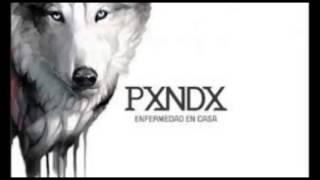 Panda  Enfermedad en casa (Descargar MP3 y WMV) Por Cesitarcooltoon