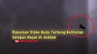 Rakaman Video Kuda Terbang Kelihatan Selepas Hujan di Jeddah