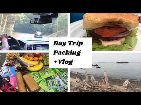 A Day Trip Packing Preparation + Vlog|Indian picnic and  road trip preparations ideas