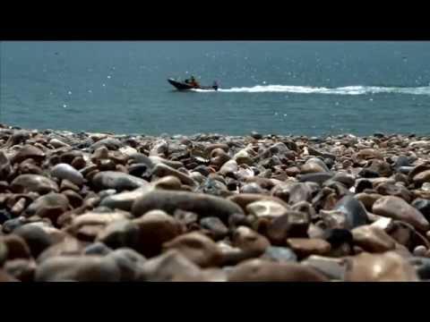 Corona Save The Beach  Campaign [web].mov