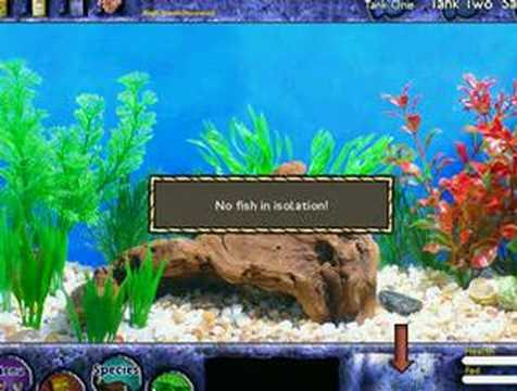 Orange Games - Fish Tycoon