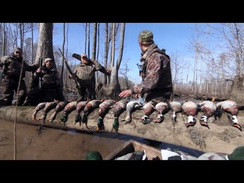 Duck Hunting Virginia And North Carolina