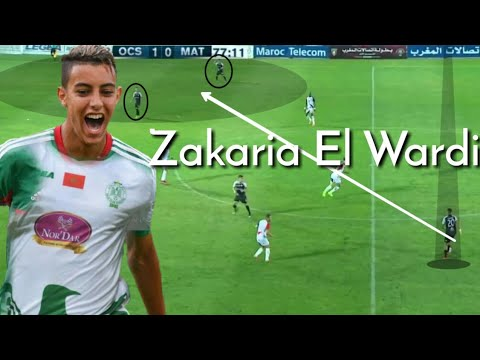 ZAKARIA EL WARDI Highlights 2019