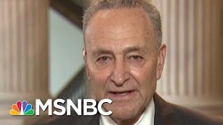 Sen. Schumer: I'm Proud Of New York, And I'm Proud Of The Protests | Morning Joe | MSNBC