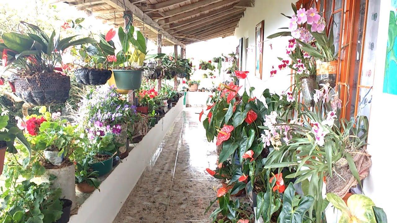 Tour Por El Jardín De Mi Vecina Noelia│candy Bu  Youtube