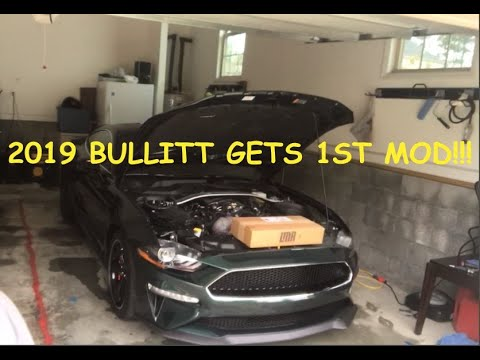 2019 Mustang Bullitt 1st Mod!!!!!