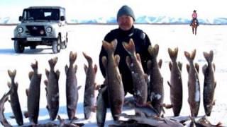 Ловля щуки зимой на жерлицы Рыбалка на Байкале
