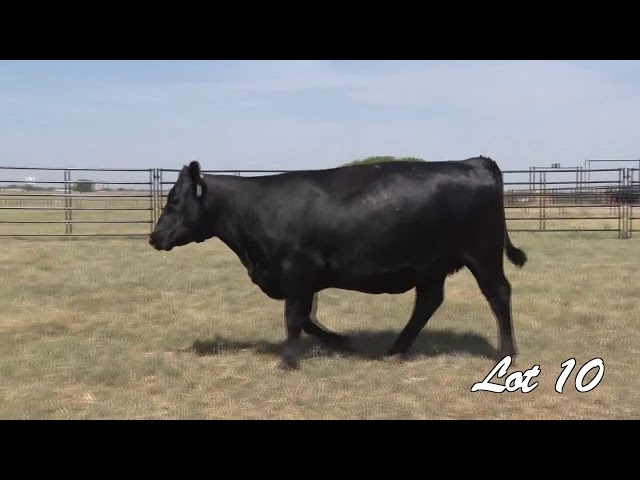 Pollard Farms Lot 10