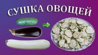 Сушка кабачков, баклажанов и огурцов на зиму | Сушеные овощи