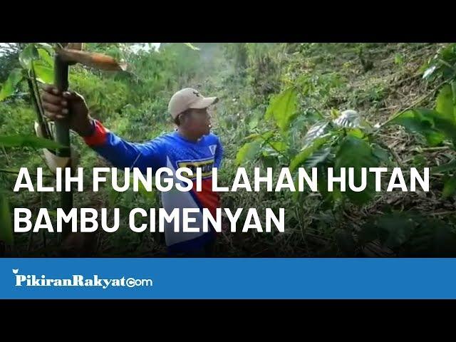 Alih Fungsi Lahan Hutan Bambu Desa Mekarwangi, Cimenyan, Kab. Bandung