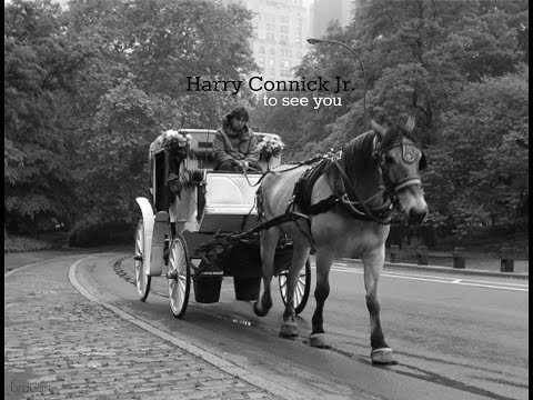 Harry Connick Jr. - to see you - full album - 1997