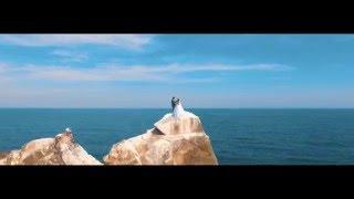 Wedding Alim/Zarema