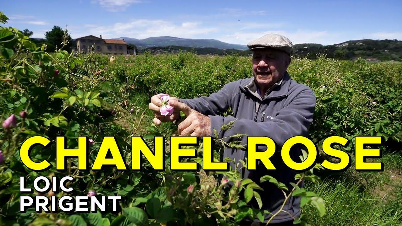 CHANEL: MEET THE MYTHICAL FARMER JOSEPH MUL! By Loic Prigent