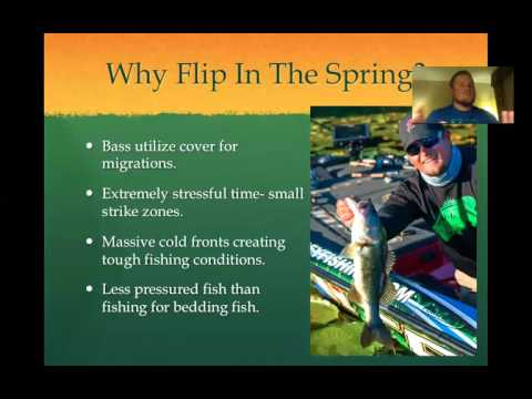 """Webinar: """"Flipping Heavy Spring Cover For Bass"""" with Miles Burghoff"""