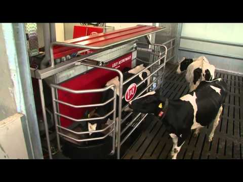 Lely - A sustainable, profitable and enjoyable future in farming