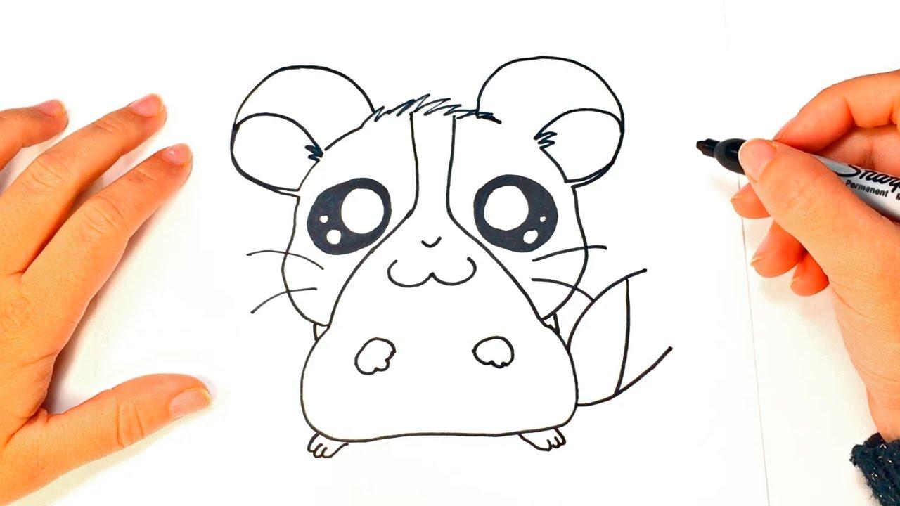 Como dibujar un hamster kawaii paso a paso youtube for Comedor facil de dibujar