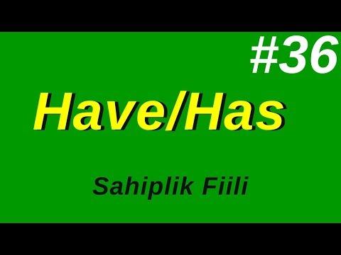 36- Have / Has Sahiplik Fiili