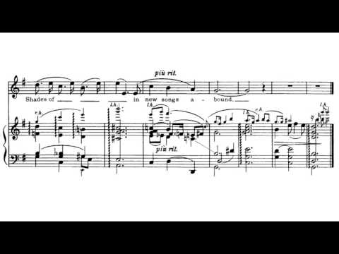 Charles Ives - On the Counter