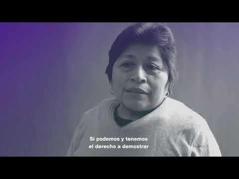 #8M Leydy Pech: mujer maya, apicultora y activista