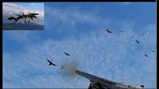 """Фильм """"Охота на гуся  Беларусь 2019-2"""" (Охотник по перу),Goose hunting Belarus 2019-2"""