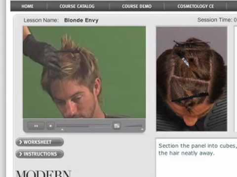 Blonde Envy Online Salon Course