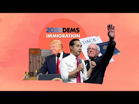How the 2020 Democrats want to fix immigration