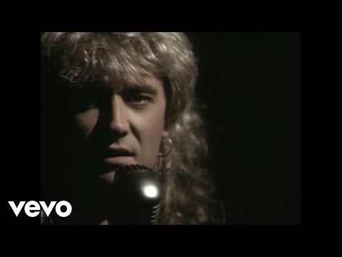 Def Leppard - Have You Ever Needed Someone So Bad?
