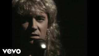 Def Leppard - Have You Ever Needed Someone So Bad? chords | Guitaa.com