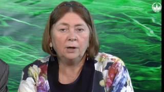 видео Ботаника как наука, Ботаника - наука о растениях, Общая характеристика растений - Ботаника