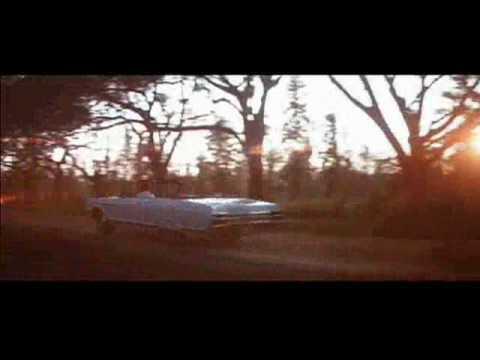 Gator final scene