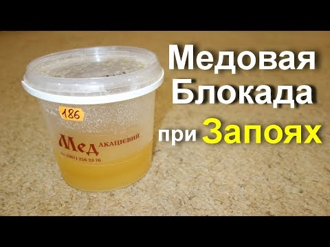 Как бросить пить? Лечение алкоголизма народными средствами. Медовая блокада при запоях