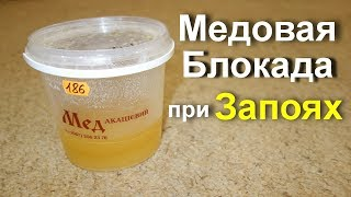 Как бросить пить Лечение алкоголизма народными средствами Медовая блокада при запоях