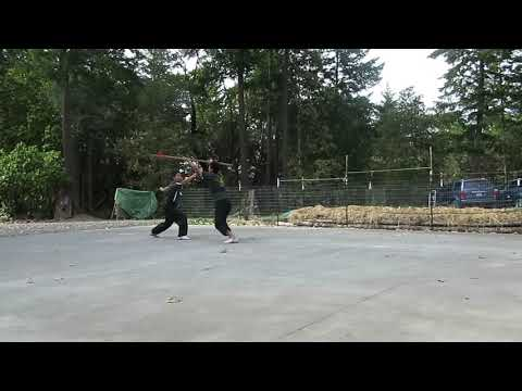Dan Dao Po Hua Qiang (Single Saber vs Spear, 單刀破花槍)