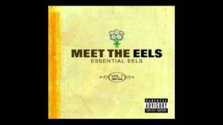 Eels- Beautiful Day (It