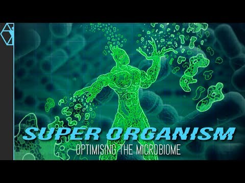 Your Microbiome Explained Optimize for Brain, Body, and Health