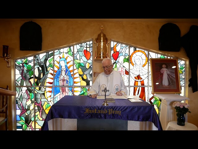 Day 8 - Fr. Michael Barry - Mercy Novena - Divine Mercy Chaplet