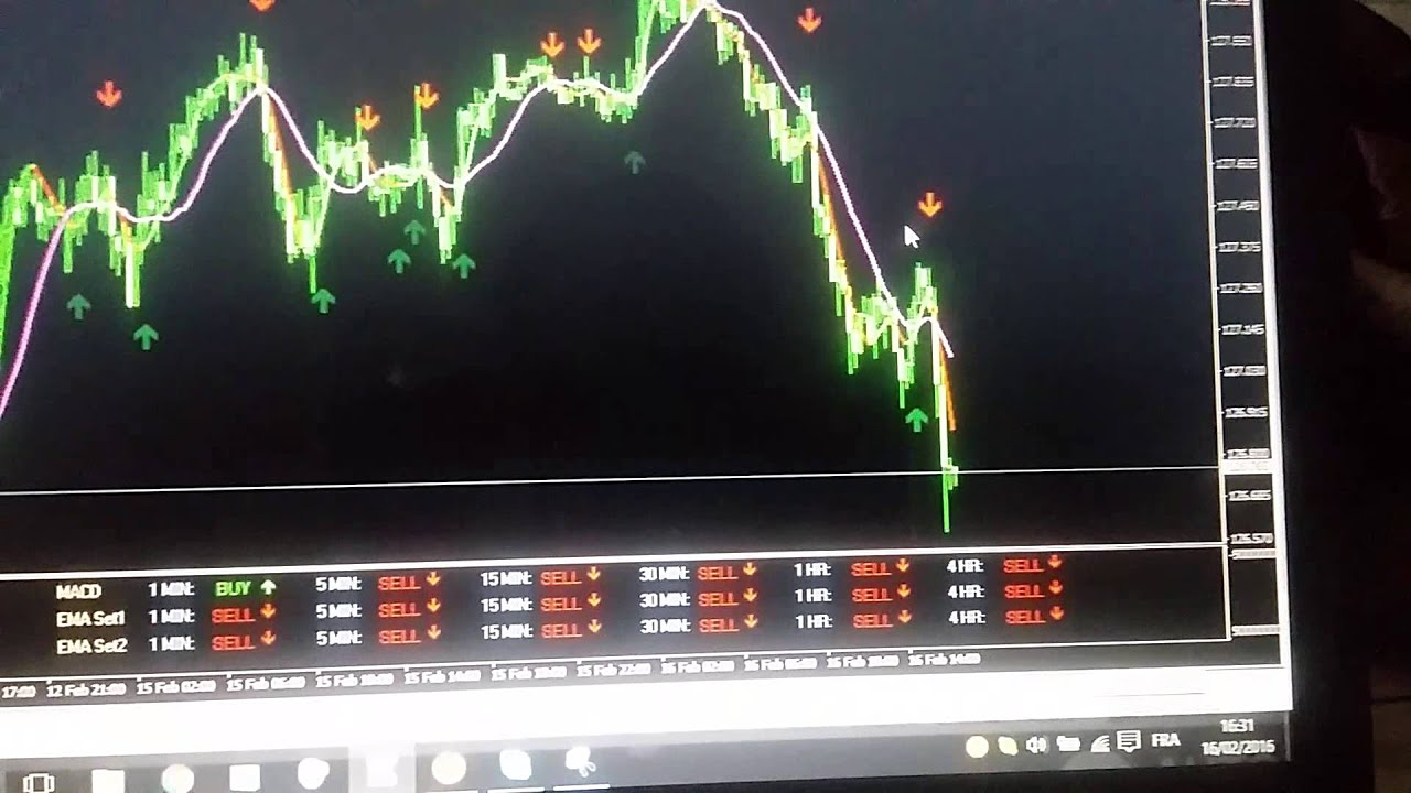Iq option reel eller fidus