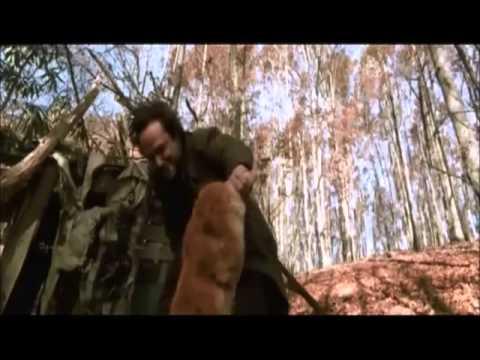 Cabana Do Terror / Cabana Do Inferno (Cabin Fever) -2002