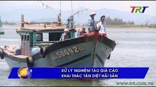 Xử lý nghiêm tàu giã cào khai thác tận diệt hải sản