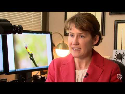 Dr. Bobbi Pritt Talks About Tick Safety