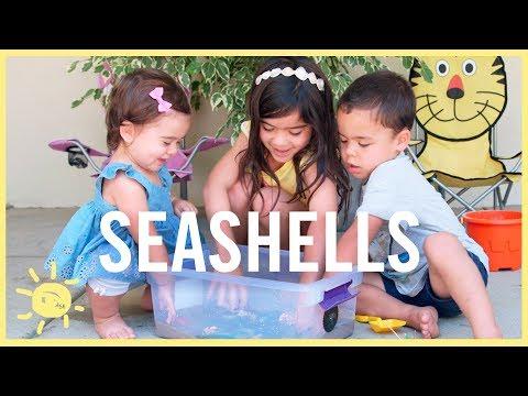 PLAY | 3 Ocean/Seashell Activities