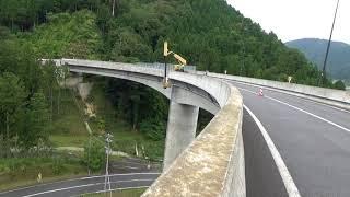 国道の 直径55cm超えの キイロスズメバチの巣の駆除 ② 四つ葉ホームサービス(福井) thumbnail