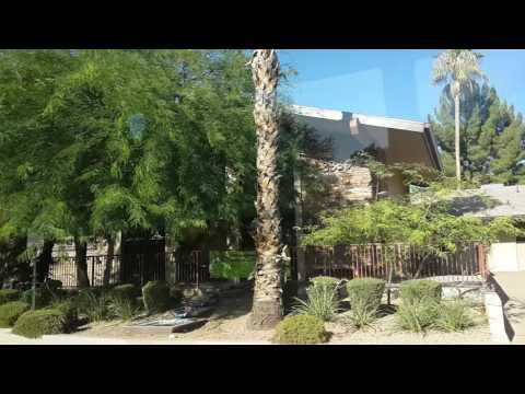 Buildings in The Phoenix City